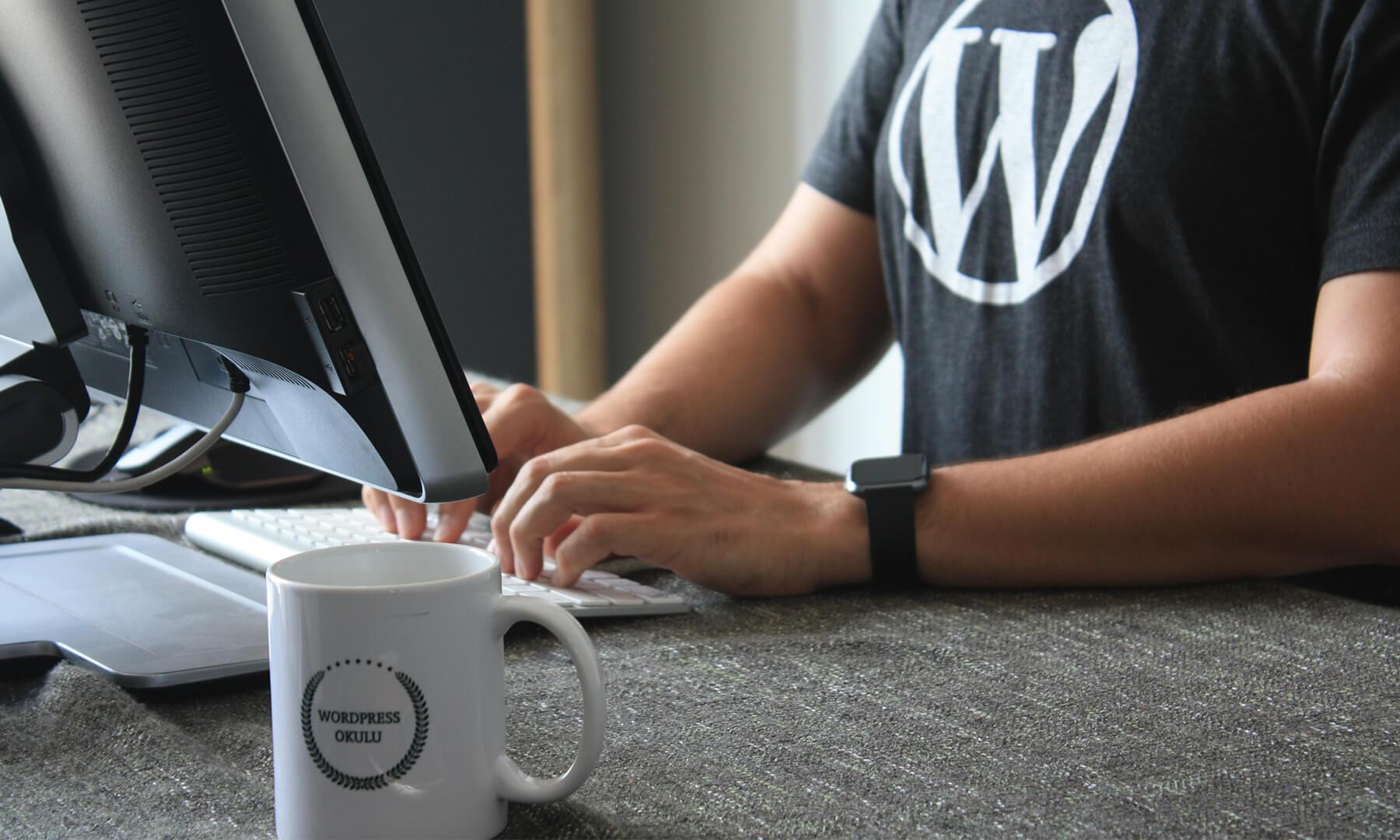 Entscheidungshilfe: WordPress für die Website verwenden oder nicht?